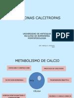 Paratiroides CA F Suprarrenales[1]
