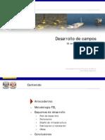 Desarrollo de campos.pdf