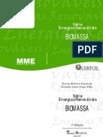 Energias Renováveis Biomassa