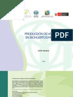 Manual Produccion Hortalizas en Biohuertos Familiares