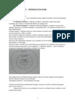 C11 AVC (Fiziopatologie)