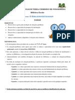 Biblioinvestigador - Regulamento