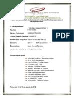 INFORME FINAL Practica Laborales