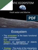 Aquatic Ecosystem Lecture