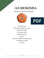Makalah Pengertian Dan Struktur Protein