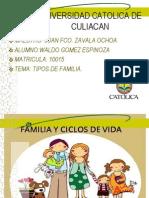 Tipos de Familia y Ciclo Vital