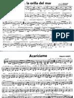 Canciones Viejas Mexicanas (boleros, mambos, tangos, sones).pdf