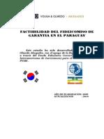 Factibilidad Fso CII 10