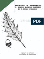 01fagaceae