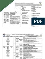 Matriz de Capacidades y Conocimientos Cta 2 Ns_2009