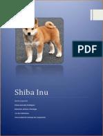 El SHIBA INU.docx