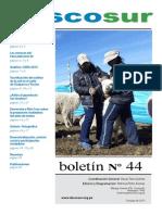 boletin44