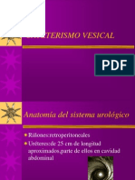 CATETERISMO VESICAL.ppt
