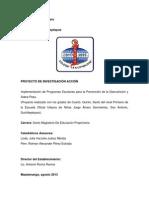 Proyecto de Investigacion Accion (Implementacion de Programas Escolares Para La Prevencion de La Desnutricion y Sobre Peso)