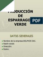 PROCESOS DE PRODUCCIÓN DE ESPARRAGOS