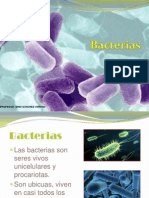 Bacterias Definicion y Clases