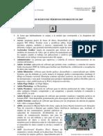 Diccionario2007