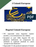 Curs 5. Bugetul Uniunii Europene