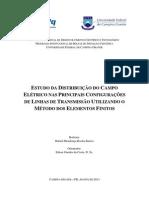 Relatorio Final - Rafael m. r. Barros