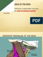 Neck Traingles 44