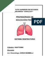 Sistema Respiratorio- 2011