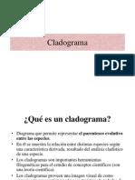 4 Cladograma