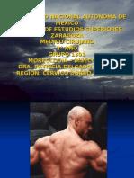 EXPOSICION_DE_CERVICODORSOLUMBAR[1]
