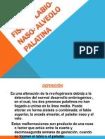 Fisura Labio Naso Alveolopalatina 120630094841 Phpapp01