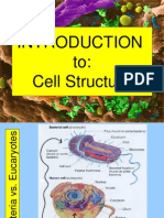 Introduction to Cell Structure