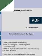 Anamneza_Profesionala