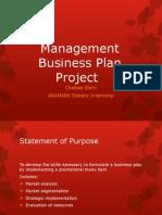 stern management business plan presentation