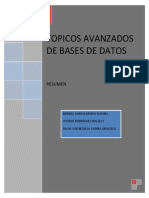 RESUMEN EQUIPO1_TopicosAvBD