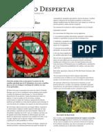 Alerta Roja - Europa Criminaliza Las Semillas Naturales
