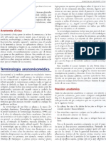 terminología anatomía moore