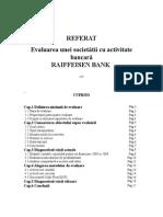 Evaluarea Unei Societati Cu Activitate Bancara