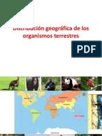 Distribución geográfica de los organismos terrestres
