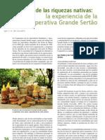 Carvalho, 2008 Experiencia de la Cooperativa Grande Sertão