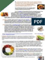 5 alimentos anti-cancer.doc