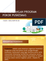 Pengembangan Program Pokok Puskesmas