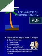 PENGGOLONGAN MIKROORGANISME
