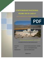 practicaspreprofesionalesing-agricolaunprg-130423142028-phpapp02