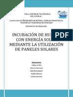 INCUBACIÓN DE HUEVOS CON ENERGÍA SOLAR MEDIANTE LA UTILIZACIÓN DE PANELES SOLARES