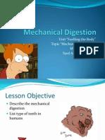 mechanical digestion