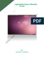 Instal Ubuntu 10 04