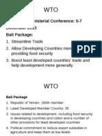 Bali WTO