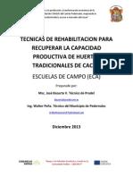 Tecnicas de rehabilitación de huertas de cacao improductivas