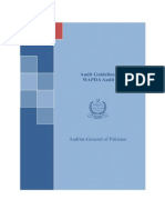 WAPDA Audit Guidelines 25 Mar 2010