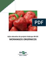 Cartilha Acao Educativa Morangos Organicos PDF