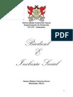 Escrito Biodiesel e Inclusão social.docx