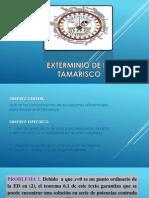 EXTERMINIO DE LA TAMARISCO.pptx